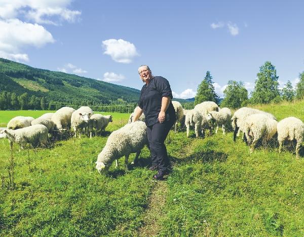 Ann-Sofie Sätherberg på Strandås tillsammans med några av sina får som hjälper till att få bort förbuskningen vid Klarälven.