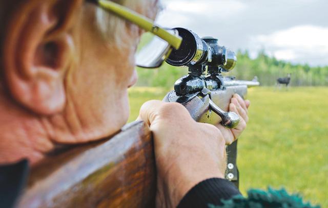 På de senaste åren har antalet skjutna älgar i Värmland minskat dramatiskt. Vargen utgör den största orsaken till älgstammens nedgång.