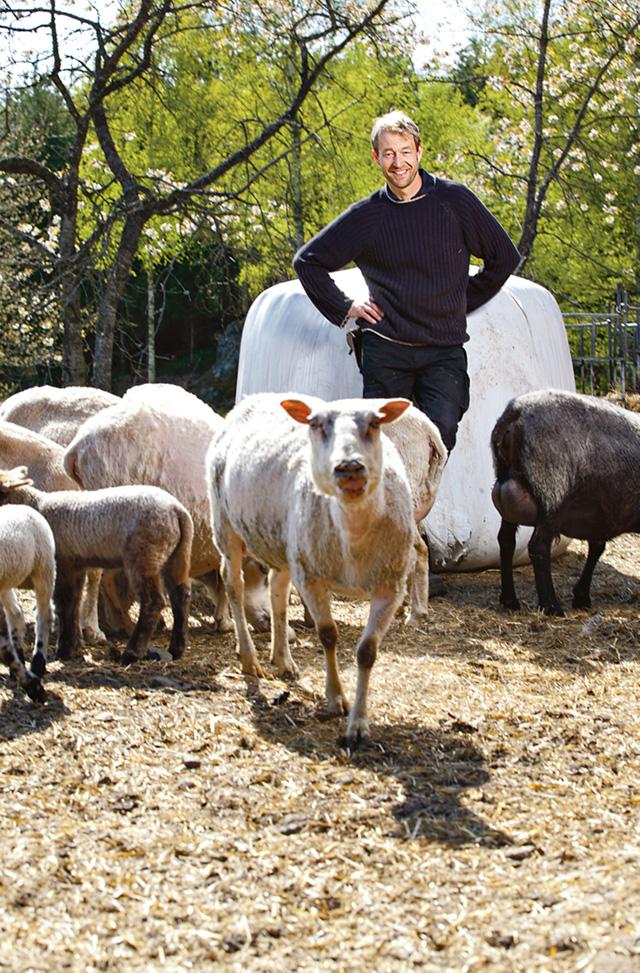 – Att köpa en gård utan eget kapitalet är svårt, för att inte säga näst intill omöjligt. Gårdspriserna är högre än avkastningen. Att köpa en gård för att leva på den finns det inga möjligheter till och så har det varit de senaste femtio åren, säger Andreas Svensson, företagschef på Valdemarsvik sparbank Bild: GUNILLA LUNDSTRÖM/MEDIAHAVET