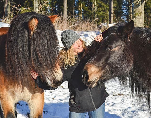 Zarah har alltid vurmat för nordsvensken. Nu avlar hon rasen för att medverka till att Nordsvensken, vacker och tålmodig. den inte dör ut.