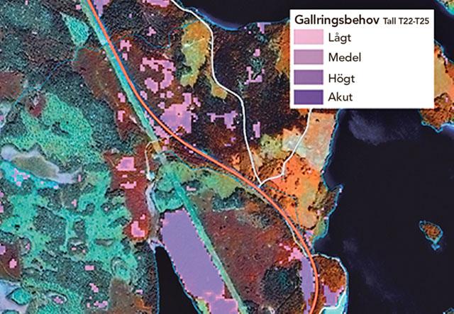 Ett utsnitt av en karta över gallringsbehovet i ett område i Bergslagen. Bild: SKOGLIGA GRUNDDATA