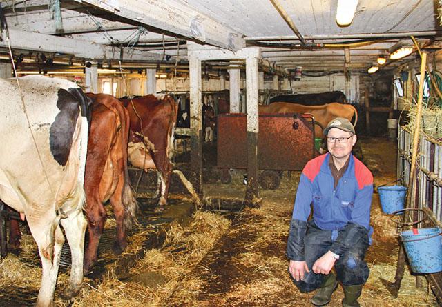 Som mjölkbonde med 23 års prickfri leverans har Kent-Åke Karlsson nu prisats med kunglig medalj.