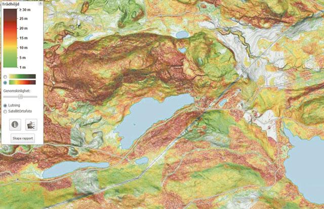 Med Skogsstyrelsens olika karttjänster kan skogsägarna enklare planera olika åtgärder. Ovan en karta som visar trädhöjd.