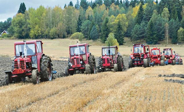 Totalt var det runt fyrtio traktorer i arbete på Tuna gård vid Nostalgitraktorklubbens nostalgiplöjning.