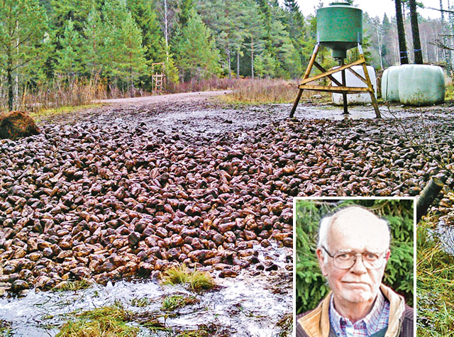 Denna typ av utfodring av vilt med mängder av sockerbetor tippade på en vändplan, vänder sig Jan Teichert starkt emot och anser den vara oetisk på flera sätt.